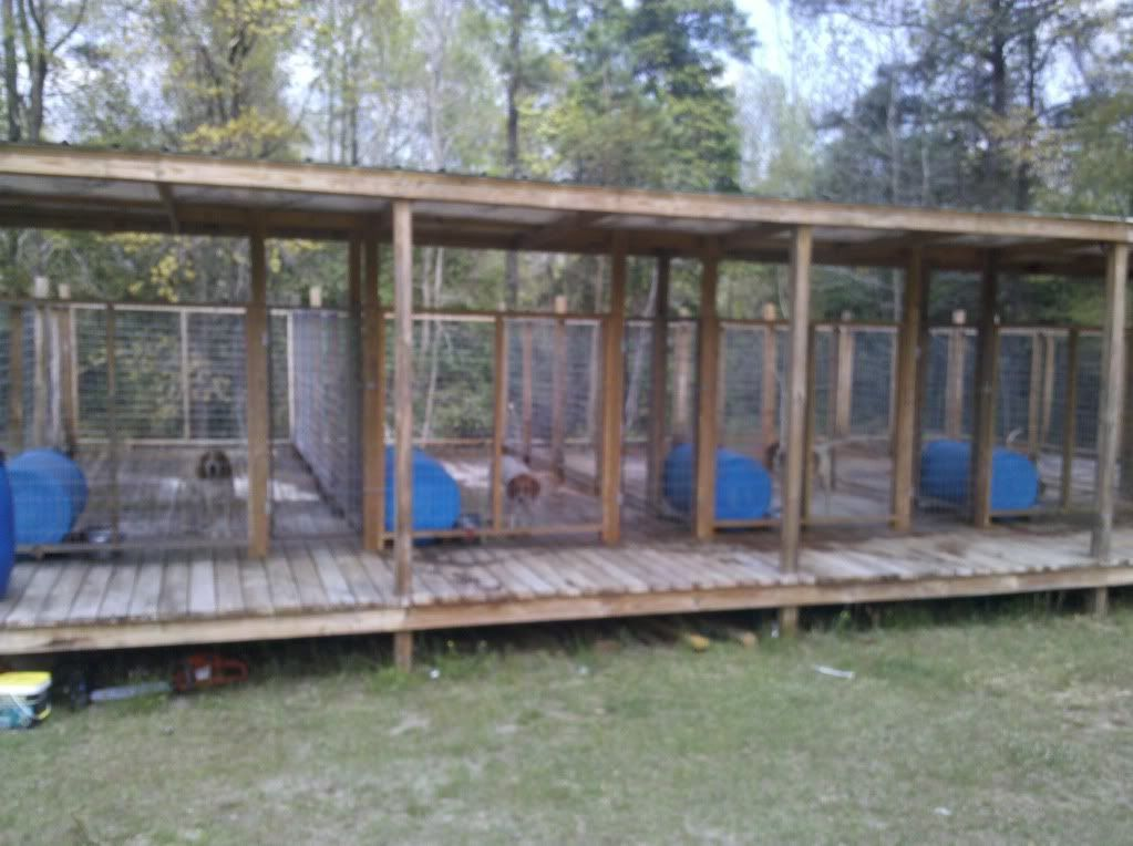 Ukc Forums More Above Ground Kennel Pics Please Dog Kennel