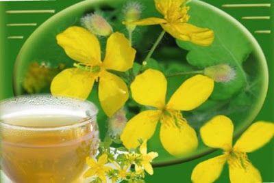 Herbal treatment.: CELANDINE