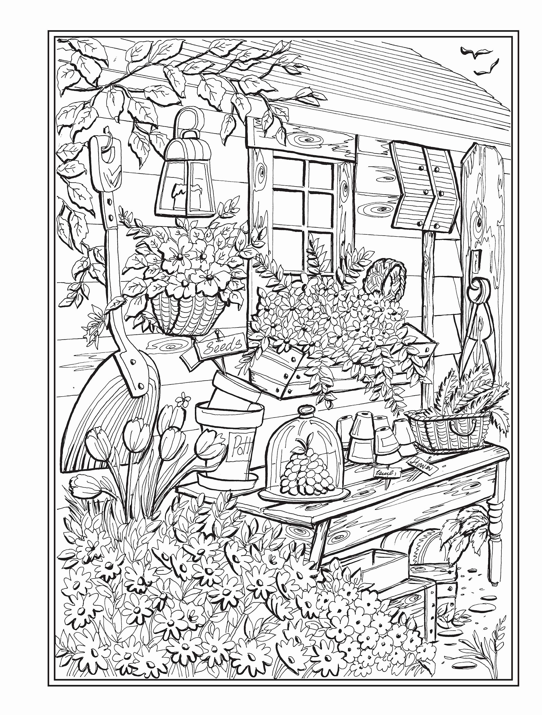Dragon City Coloring Pages Fresh Top 12 Splendiferous Creative Haven Country Charm Coloring In 2020 Creative Haven Coloring Books Coloring Books Coloring Pages