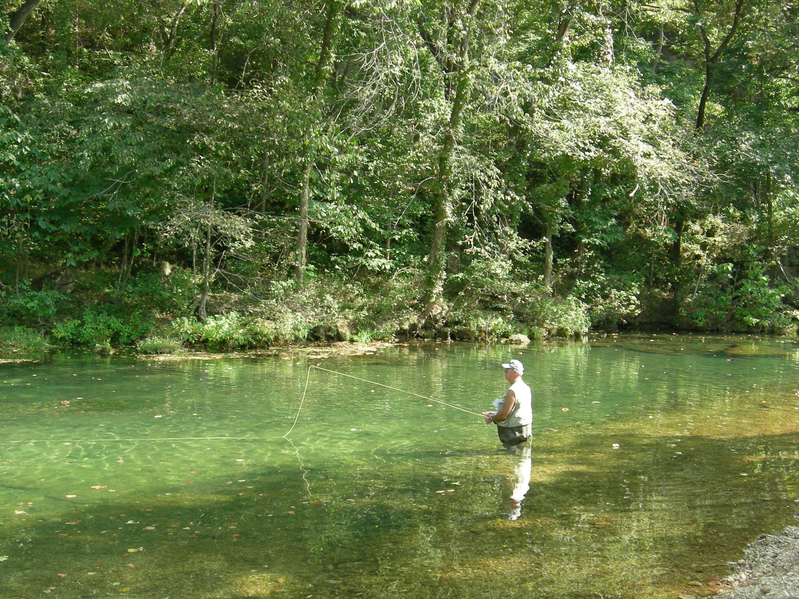 Rockbridge mo trout fishing trout fishing trout