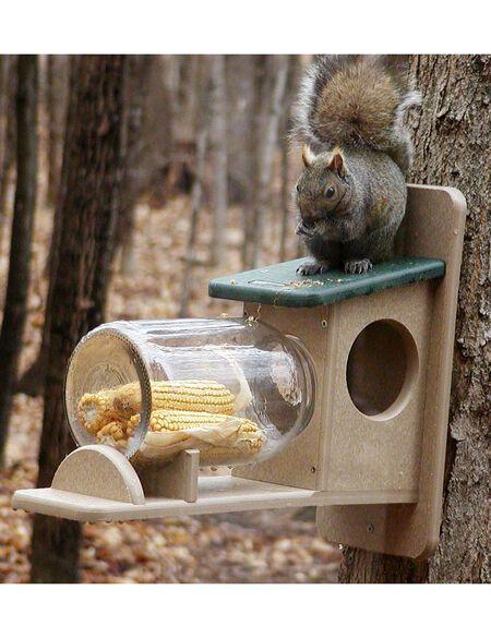 Birds Choice Squirrel Jar Feeder | Gardener's Supply