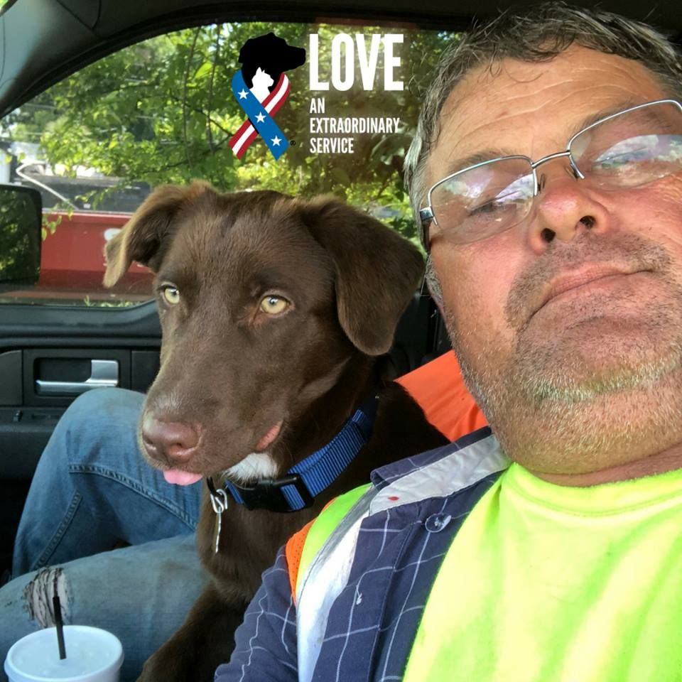 """Dog, veteran, hero"" via Soldiers Live Meet Gabe. He's a"