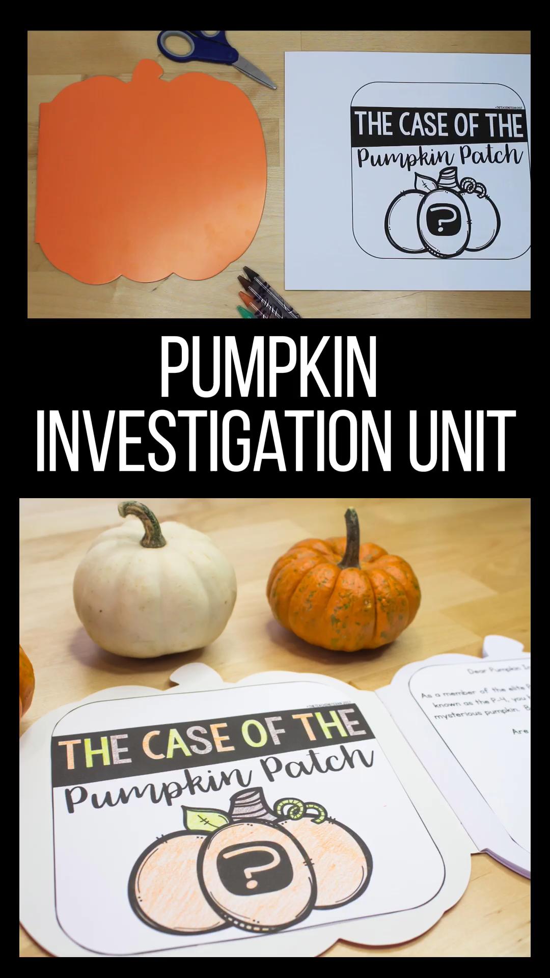 Pumpkin Investigation Unit Video Pumpkin Lessons Pumpkin Investigation Pumpkin Activities [ 1920 x 1080 Pixel ]