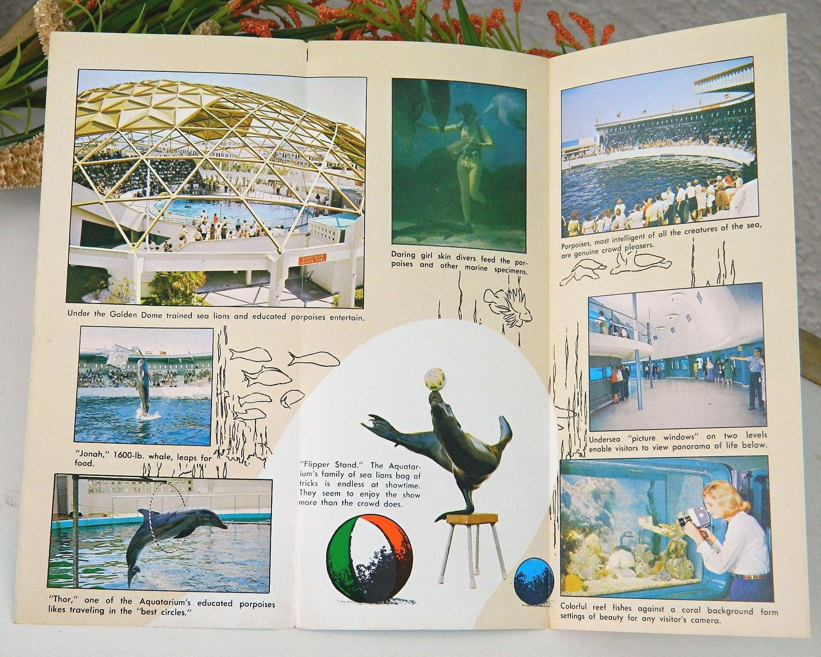 Vintage Aquatarium Brochure Aquarium St Pete Beach Florida 1960s Ephemera Souvenir Travel Memorabilia Tri Fold Marine Attraction Gulf Of