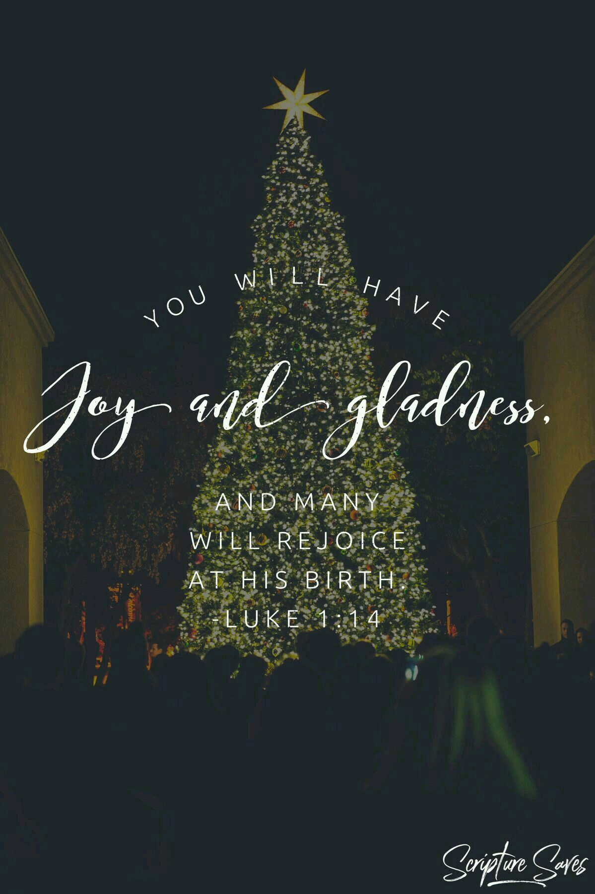 Pin By Tammy Reedy Strader On Christian 1 Christmas Scripture Christmas Quotes Scripture Quotes