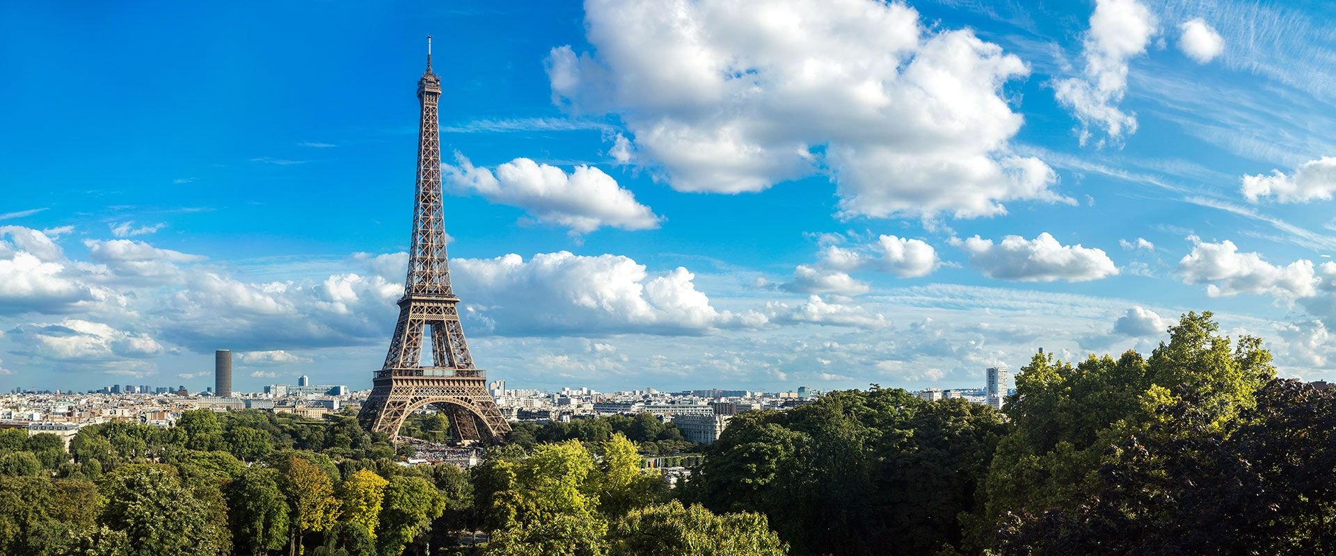 Our Paris bus tours offer the perfect introduction to the