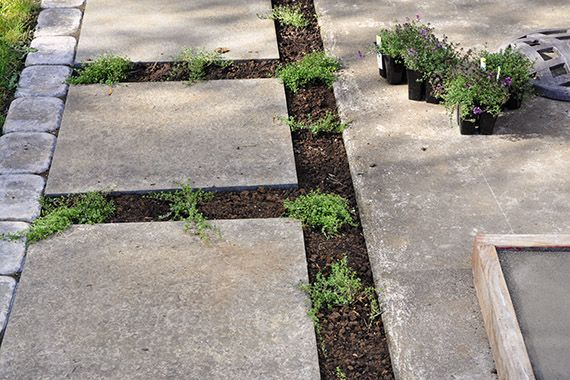 Homemade Pavers Very Affordable Way To Beautify Your Yard