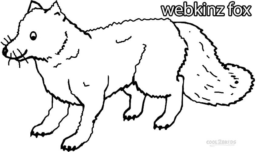 Printable Webkinz Coloring Pages For Kids Cool2bkids Fox