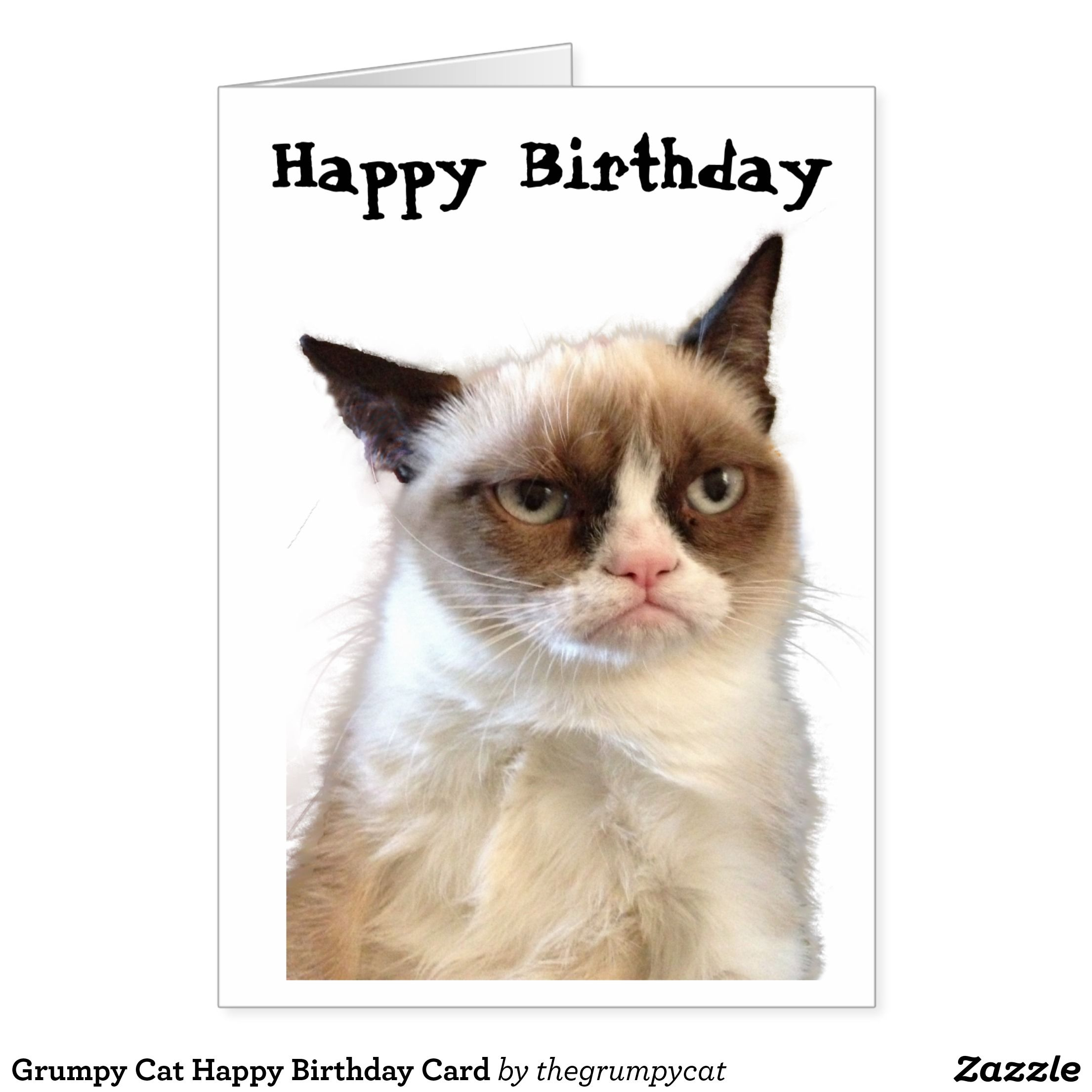 Birthday cat Grumpy best photo