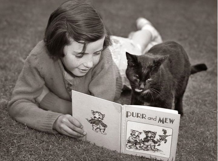 Pin by whatmovesthem onvintage... Cat reading