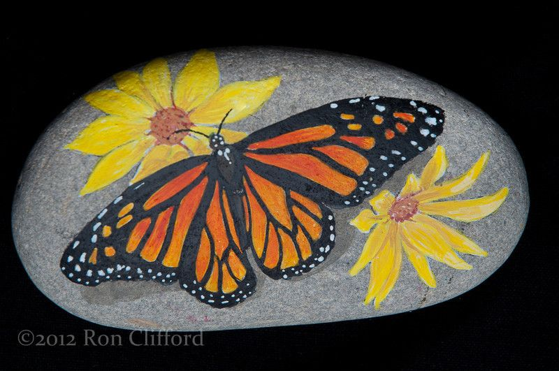 A Collection of Painted Rocks - ronclifford