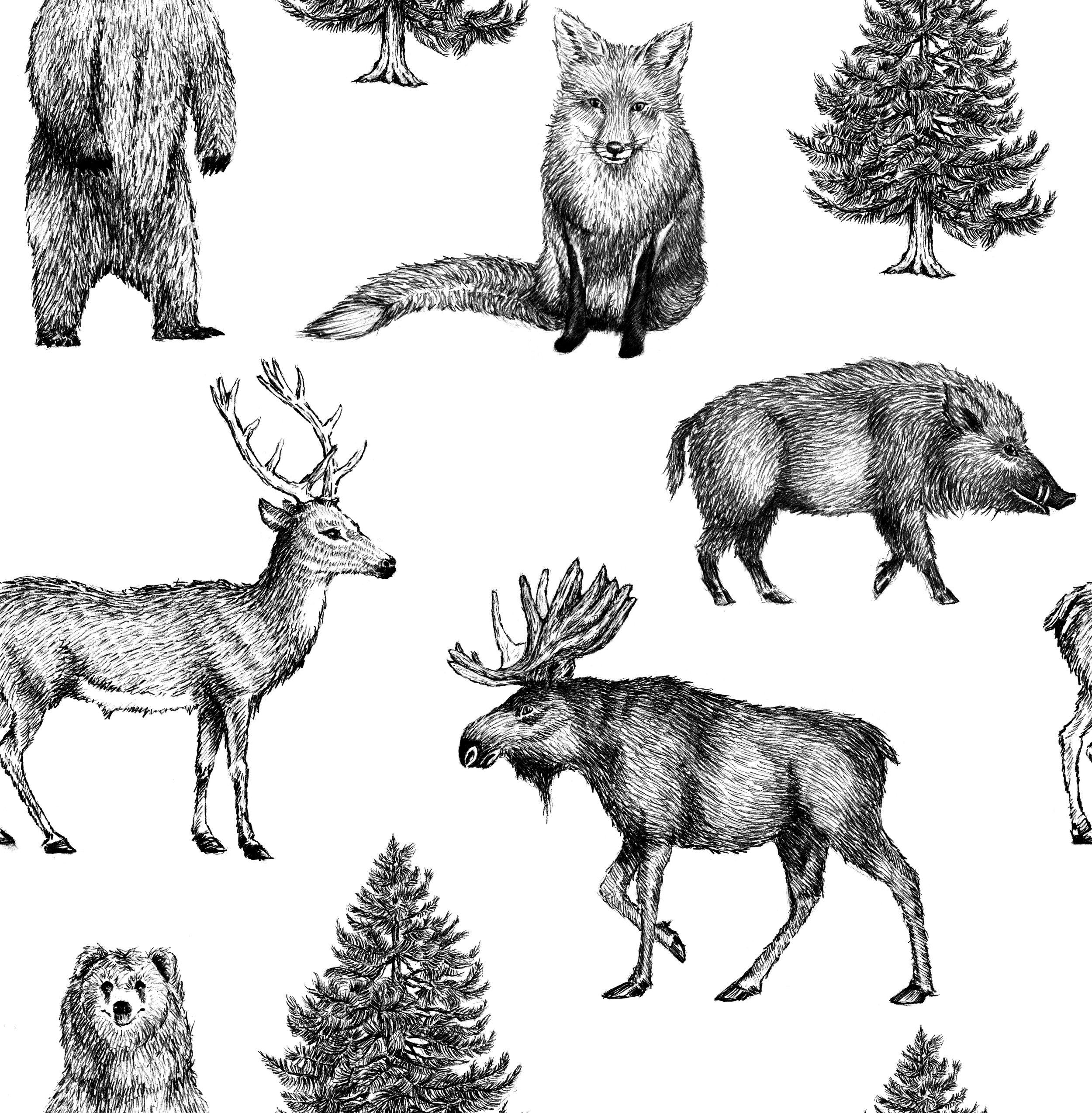 Graham brown getekende dieren behang behang pinterest bruin en dieren - Graham en bruine behang ...