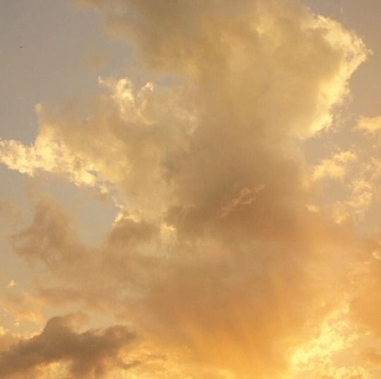 Rosescentimental Sky Aesthetic Yellow Aesthetic Gold Aesthetic