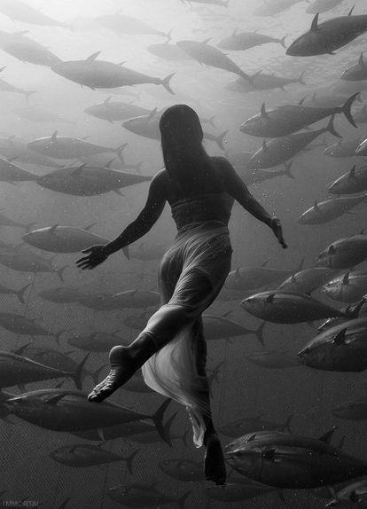 "❂ ""Ignore the conventional wisdom about what you should or should not be doing. It may make sense for some, but that does not mean it bears any relation to your own goals and destiny."" I Robert Greene "" I Saho Harada photographed by Kurt Arrigo"