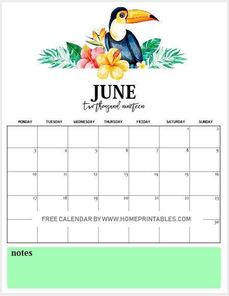 Free Printable Monthly Calendar 2019 in Vibrant Tropical Forest