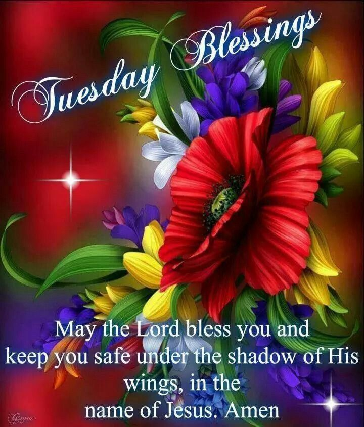 Tuesday's blessings