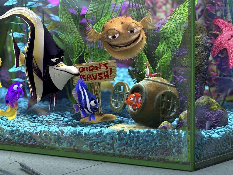 Nemo Et Dory Le Monde De Nemo Aquarium Decoration Nemo