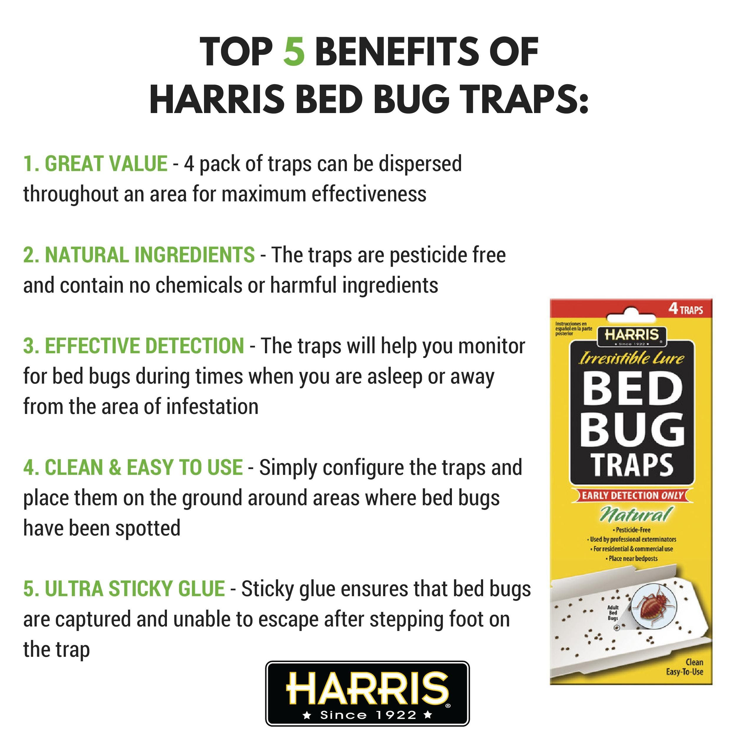 Harris bed bug early detection glue traps 4pack want to