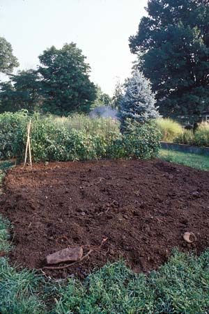 8 Steps for Making Better Garden Soil Garden soil Vegetable