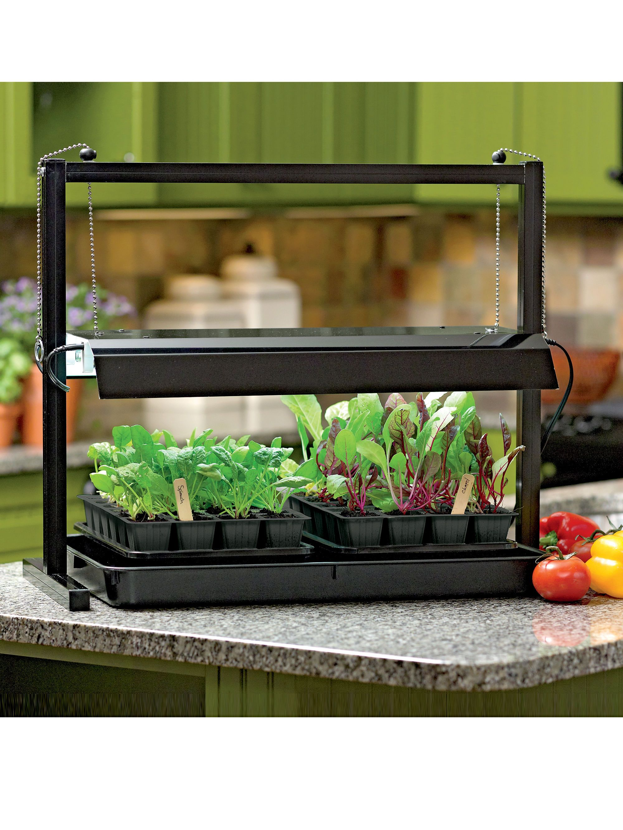 Small Table Top Grow Light With T5 Bulbs Gardeners Com Kitchen