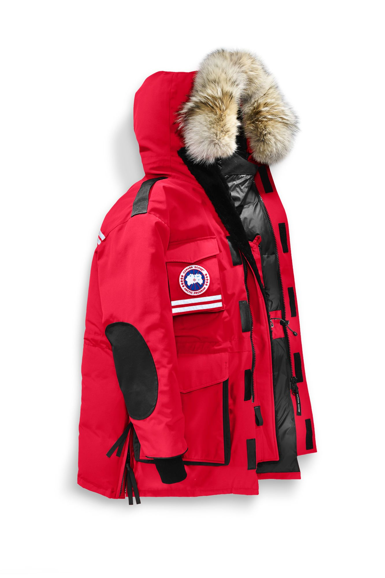 canada goose antarctic program