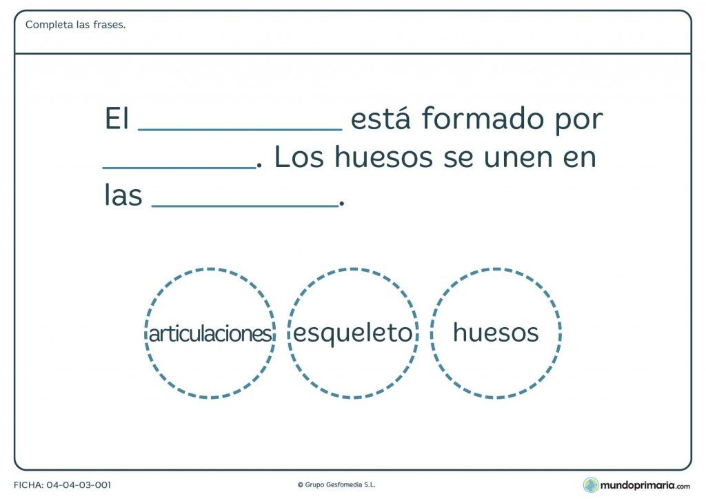 Fichas para imprimir | El esqueleto, Mundo primaria y Material ...