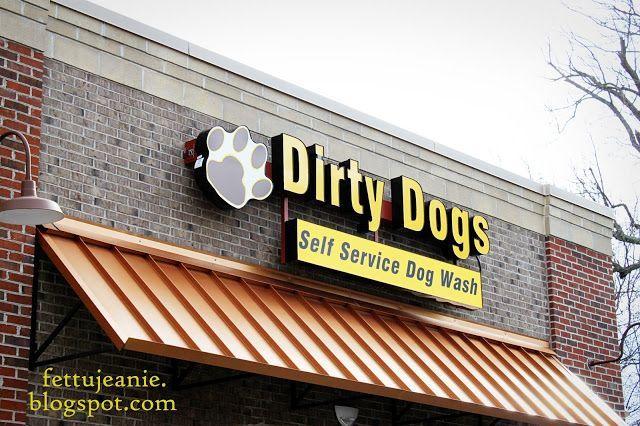 Pin On Dog Wash