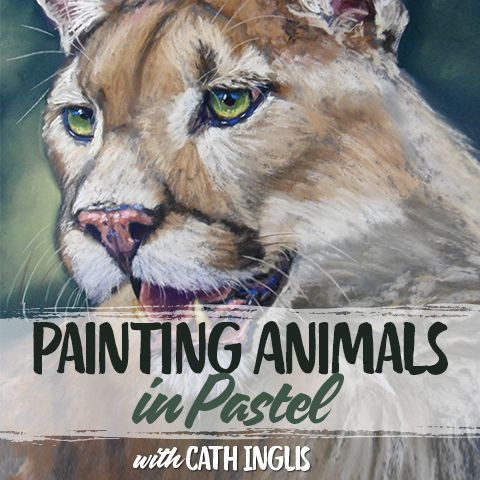 Discover how to paint a wide variety of animals, both wild and domestic with the Pastels Animals Course. We've carefully chosen the selection of studies that demonstrates the broadest range of techniques possible - from eyes to noses and fur to scales. Follow these lessons and you'll have enough references in your armoury to tackle almost any animal or pet you please!
