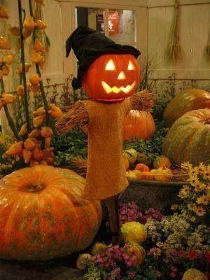 Halloween Halloween Pinterest Halloween parties
