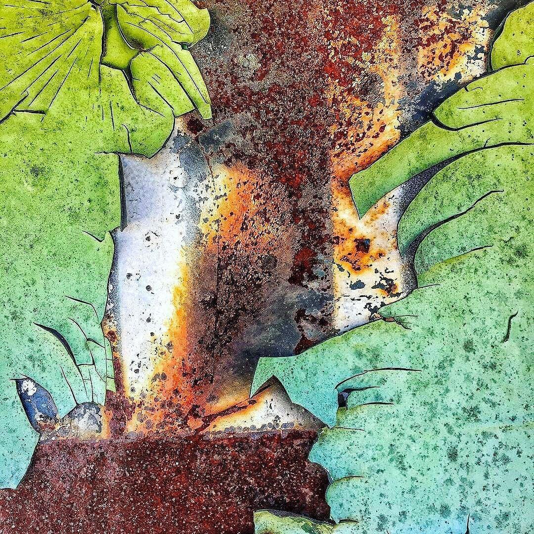 كان قديما يدعى فساد تركوه حتى كبر وترعرع في بلادي فـ ساد أحمد مطر حكم صور Abstract Artwork Artwork Painting