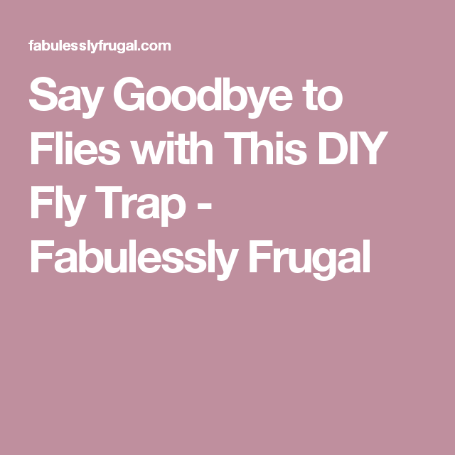 Goodbye House Flies Easy Diy Fly Trap Homemade Version Recipe Diy Fly Trap Fly Traps Homemade Fly Traps