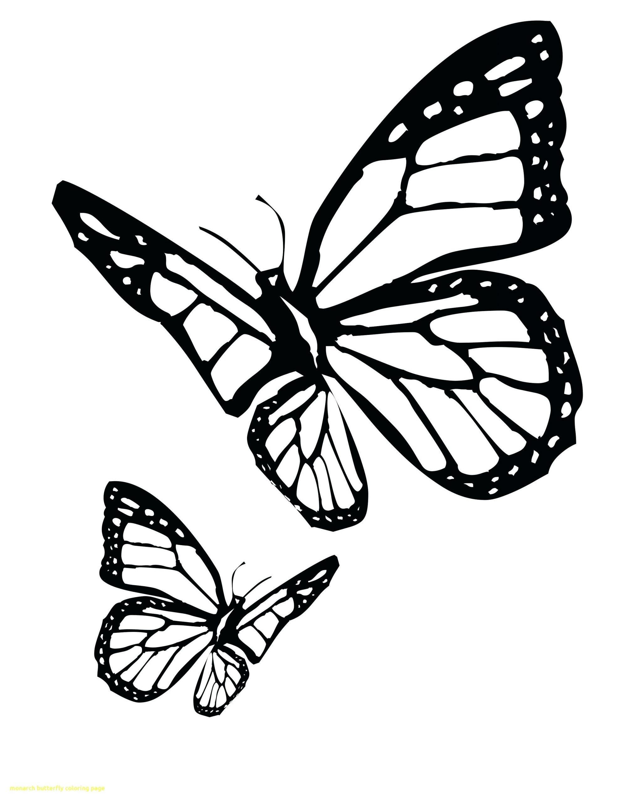 Printable Butterfly Coloring Page Youngandtae Com Butterfly Coloring Page Butterfly Drawing Outline Butterfly Tattoo Stencil [ 2560 x 1978 Pixel ]