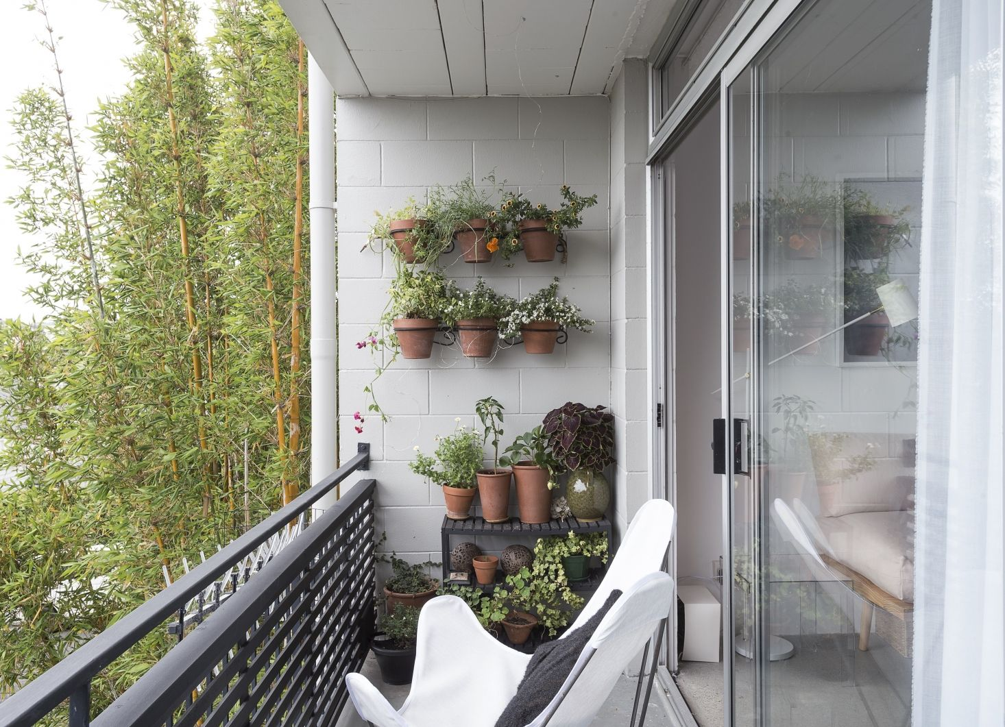 Photo of Steal This Look: Balcony Garden on a Budget – Gardenista