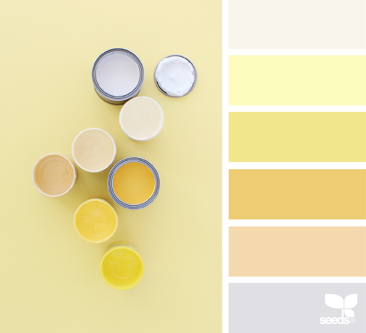 Color Create Color Palette Yellow Seeds Color Palette Design Seeds Color Palette