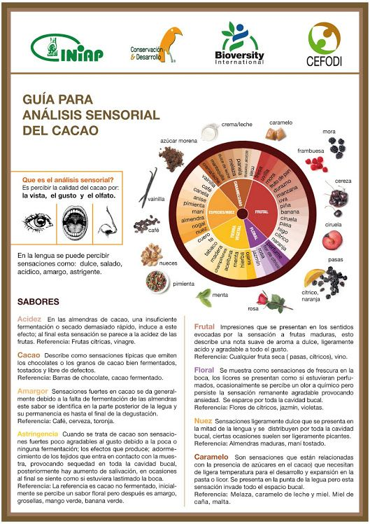 Evaluacion Sensorial Cacao Pg 06 2010 Con Imagenes Analisis