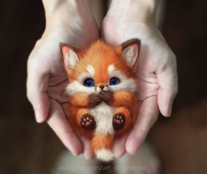 Latest Funny Drawings Artist Draws The Most Adorable Looking Animals and Imagines Them Living In Reality Artist Draws The Most Adorable Looking Animals and Imagines Them Living In Reality 5