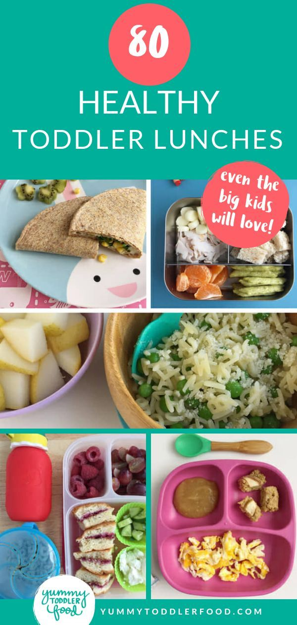 80 Healthy Toddler Lunches images
