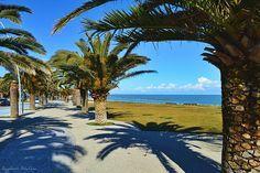 Grottammare sul lungomare ... Riviera delle Palme