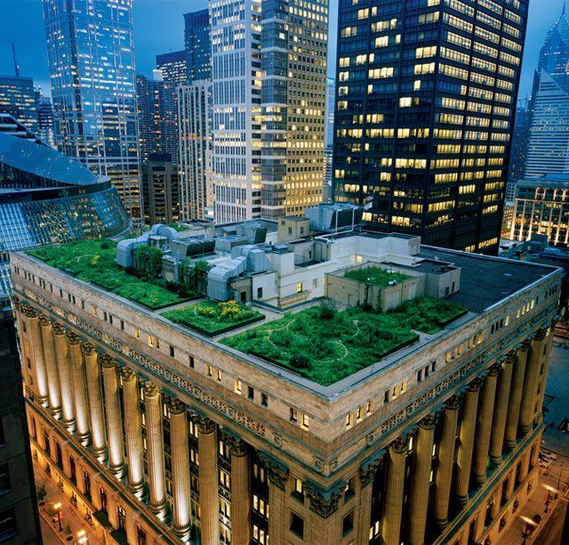 Les toits végétaux de Chicago Architecture, Skyscrapers  Unusual