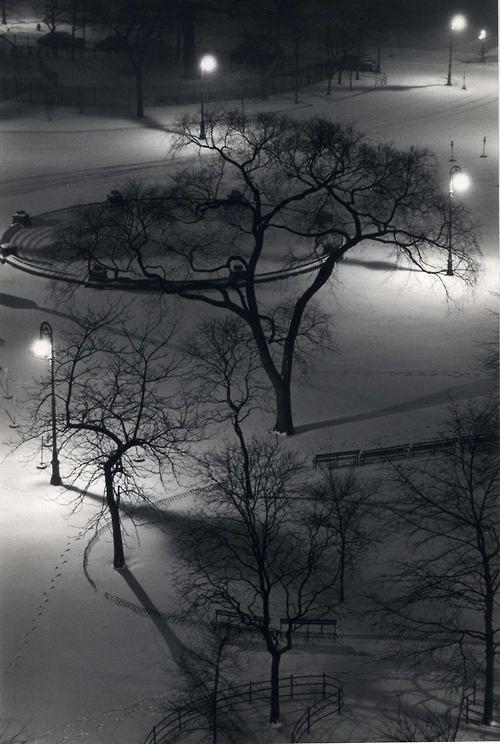 André Kertész Washington Square Park. 1954::|cM
