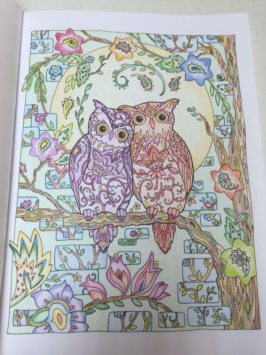 creative haven owls 14