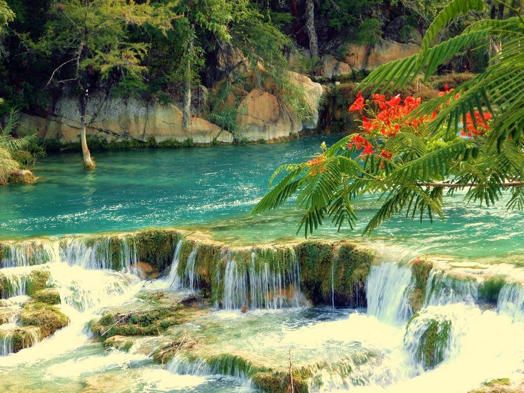 Cascadas paraiso cascadas estanques de jard n y for Estanque de jardin con cascada