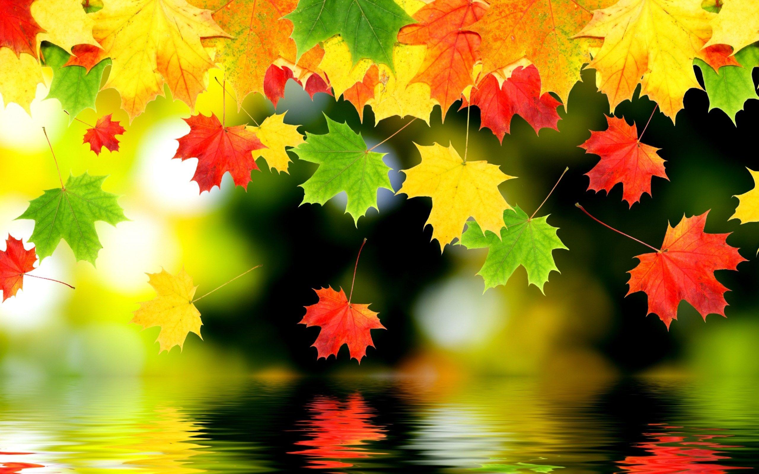 Картинки про осень для презентации, днем марта