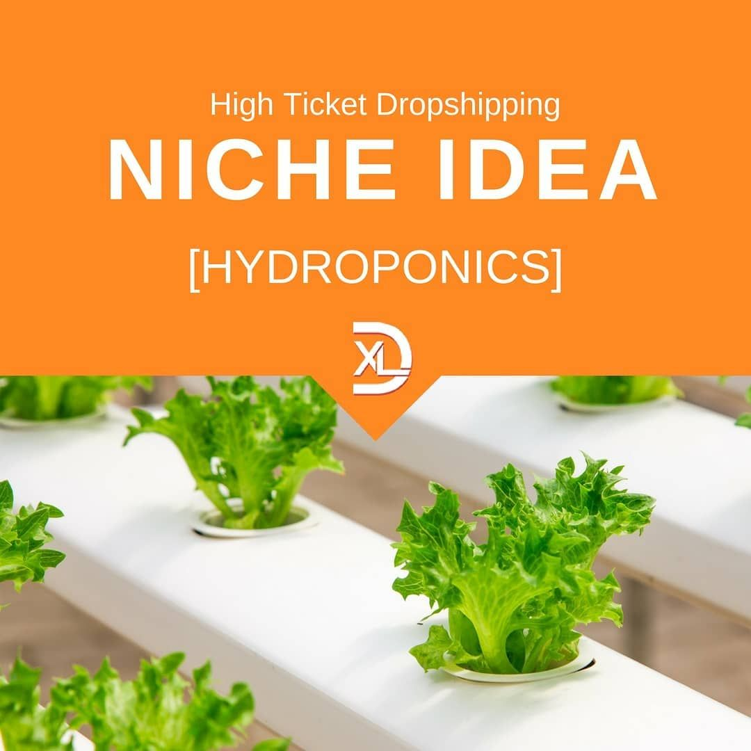 Hydroponics continues to be a strong industry  This could be