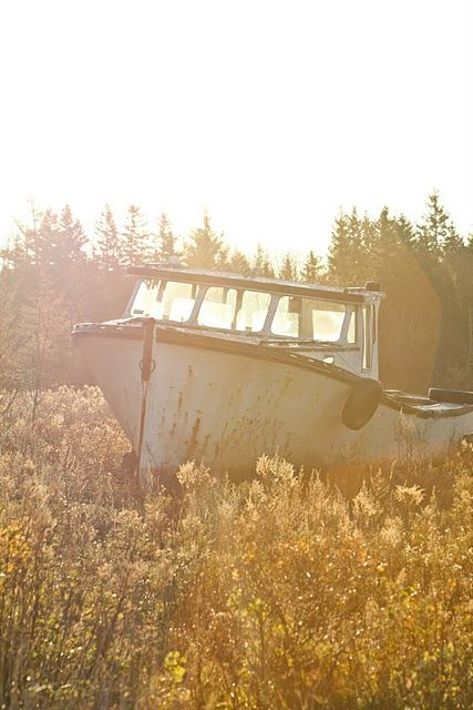 i have a thing for rusty old boats