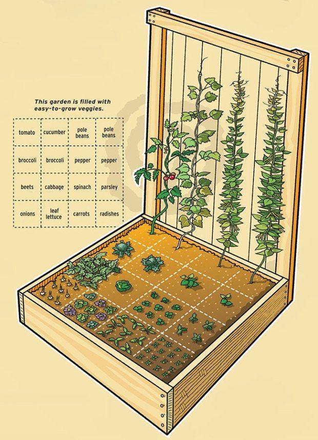 Sie können nahe beieinander anstelle der traditionellen Reihen in Quadrate, indem Pflanzen in einem
