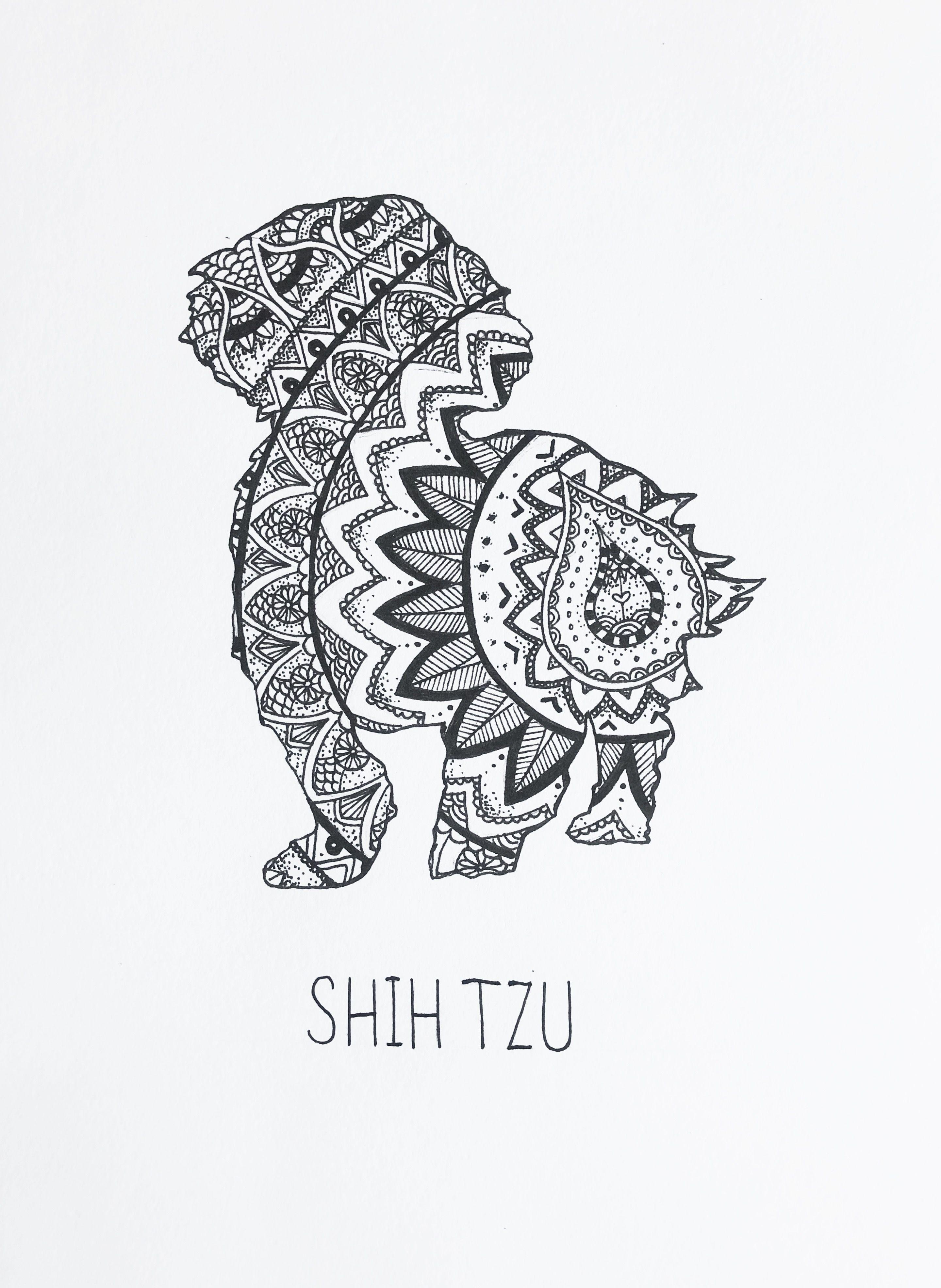 Shih Tzu Mandala Drawing Print In
