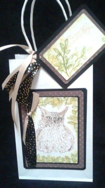 Owl gift bag