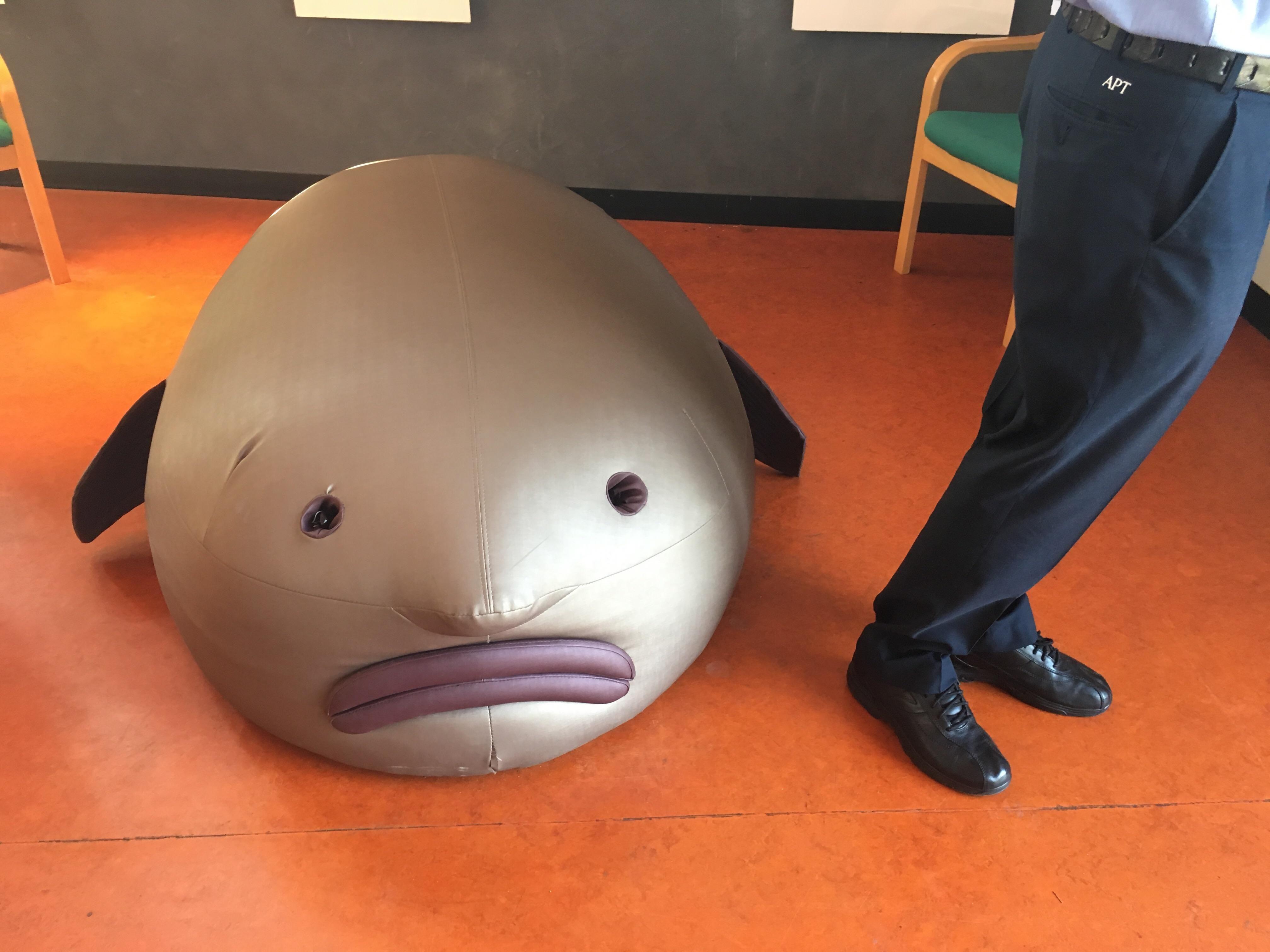 blob bag