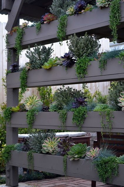 vertical planters by Living Gardens Landscape Design. Oh oh oh I love this. What a great way to display plants between the posts on my patio. Hmmmm, wonder if I can talk my son into doing this.